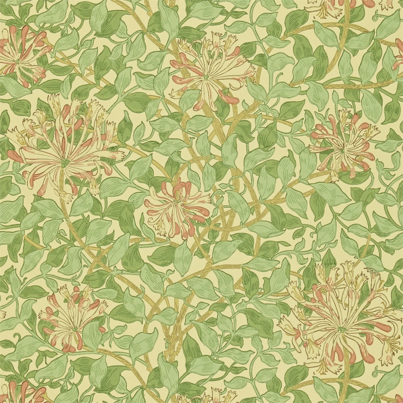 William morris wallpaper honeysuckle for Arts and crafts style prints
