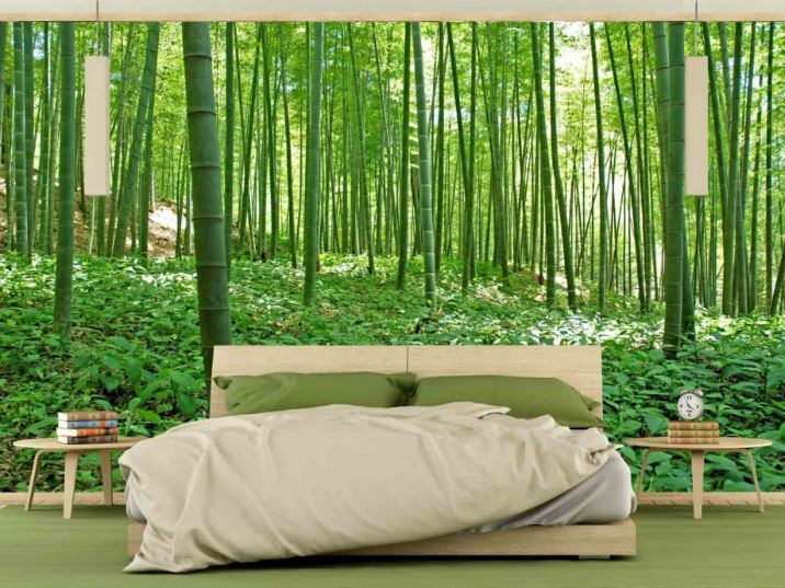 Finest mural bamboo forest for Bamboo forest wall mural