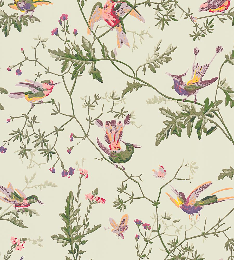 cole son hummingbirds wallpaper. Black Bedroom Furniture Sets. Home Design Ideas