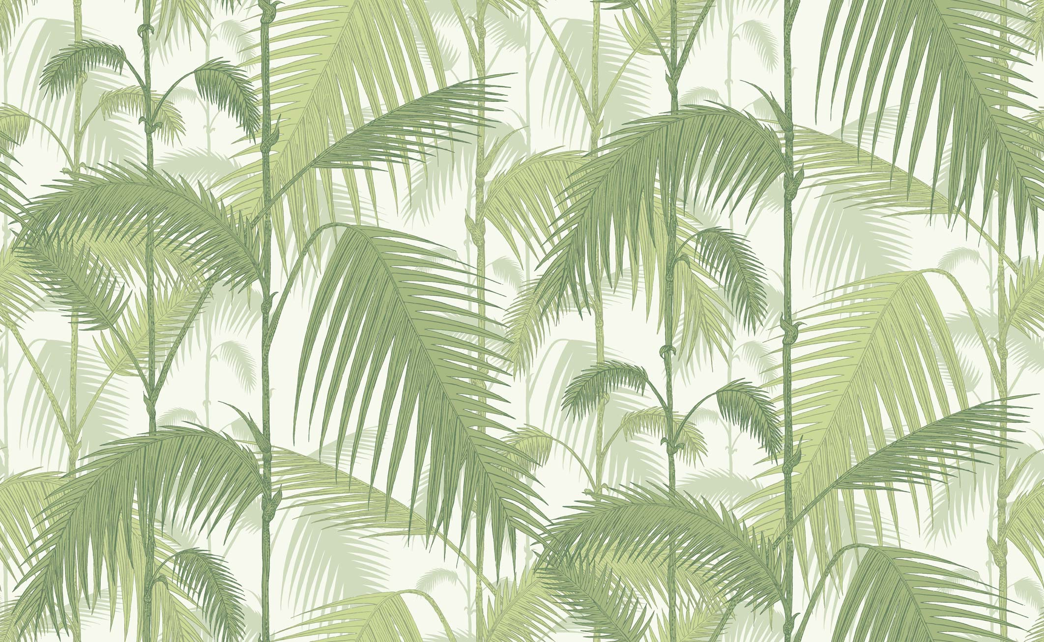 cole son palm jungle wallpaper. Black Bedroom Furniture Sets. Home Design Ideas